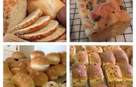 Better Bread Experience_070beaa48293df847b4082b0689fc628