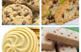 Biscuit Courses_85c70916031dfd169e618711ec574993