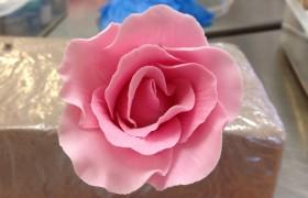Sugar Flower Courses